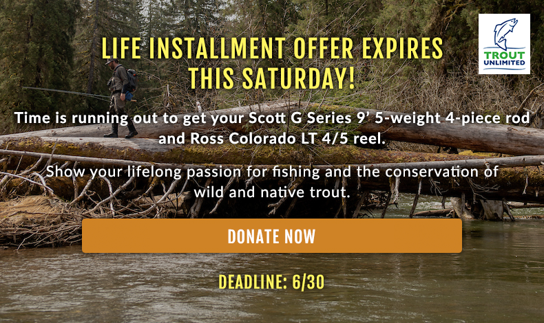 Life Installment Offer Expires This Saturday!